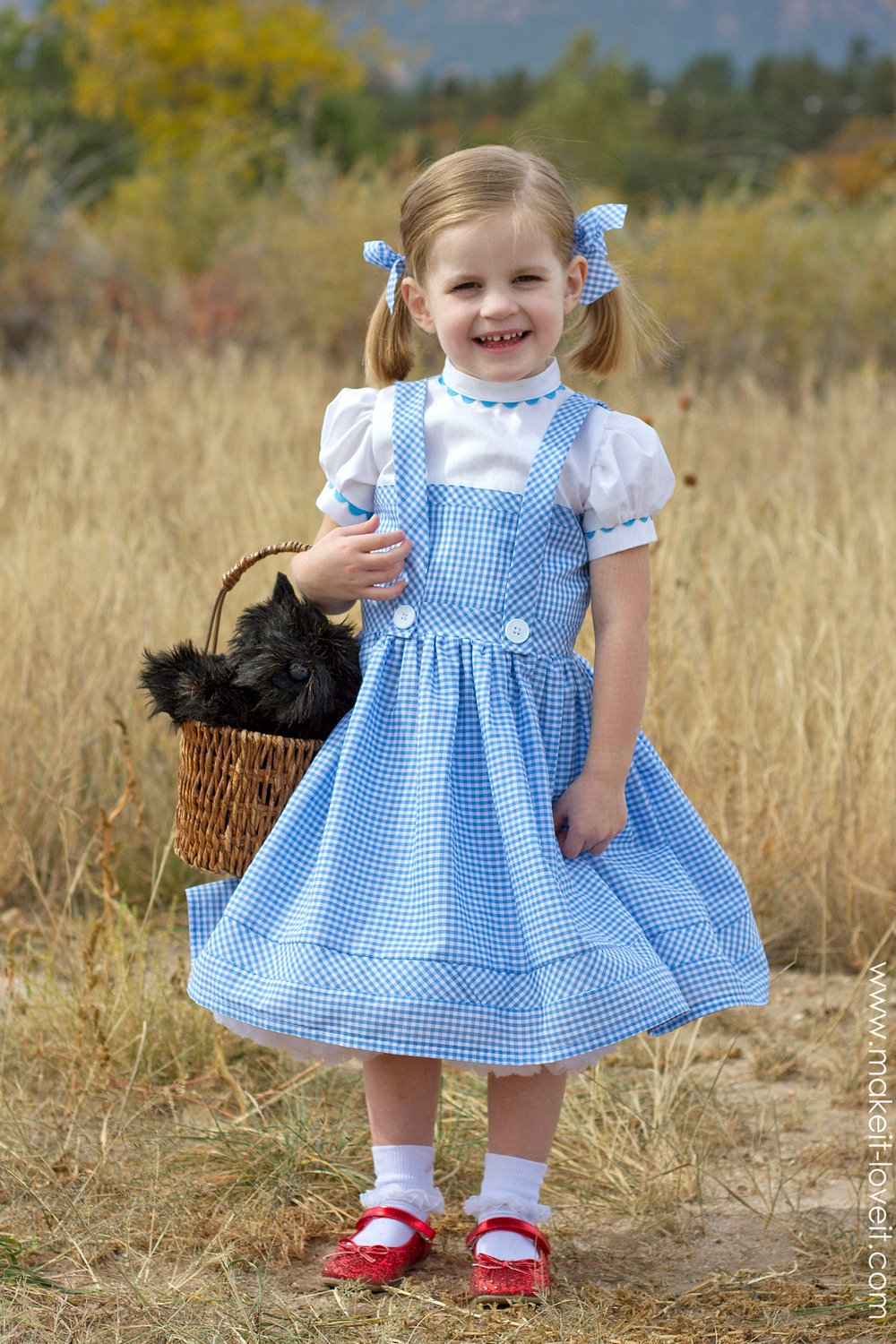 halloween 2014 dorothy from quotwizard of ozquot make it