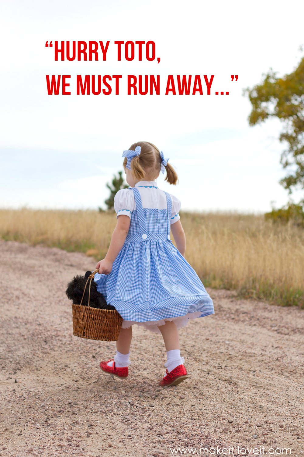 DIY Dorothy Costume (from Wizard of Oz) | via Make It and Love It