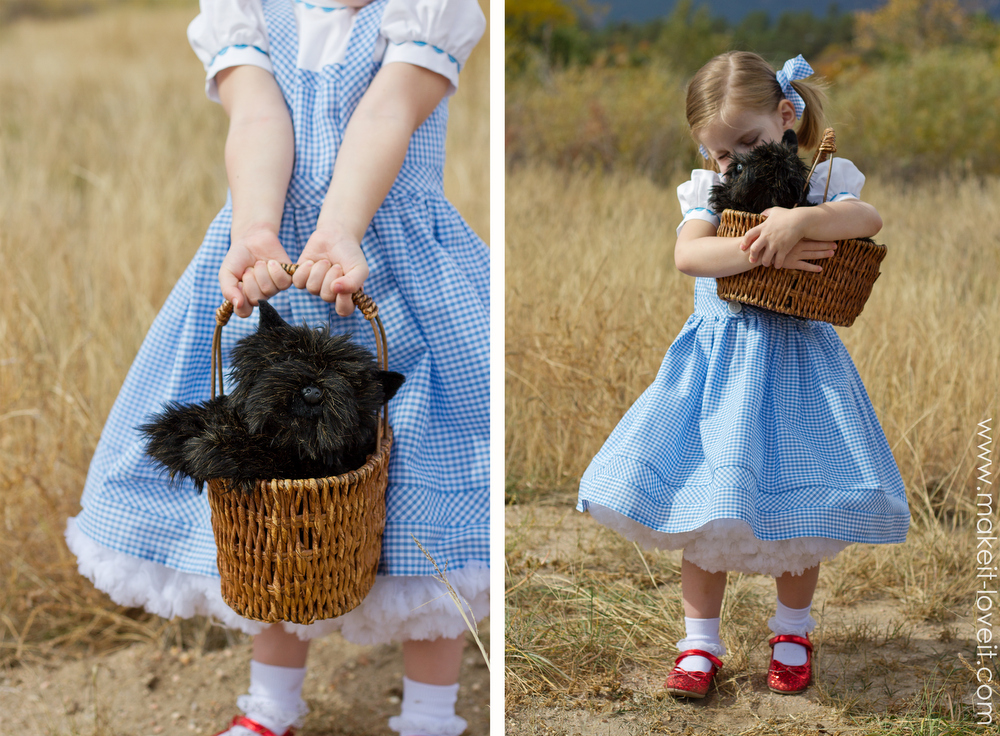 Image result for dorothy costume kids