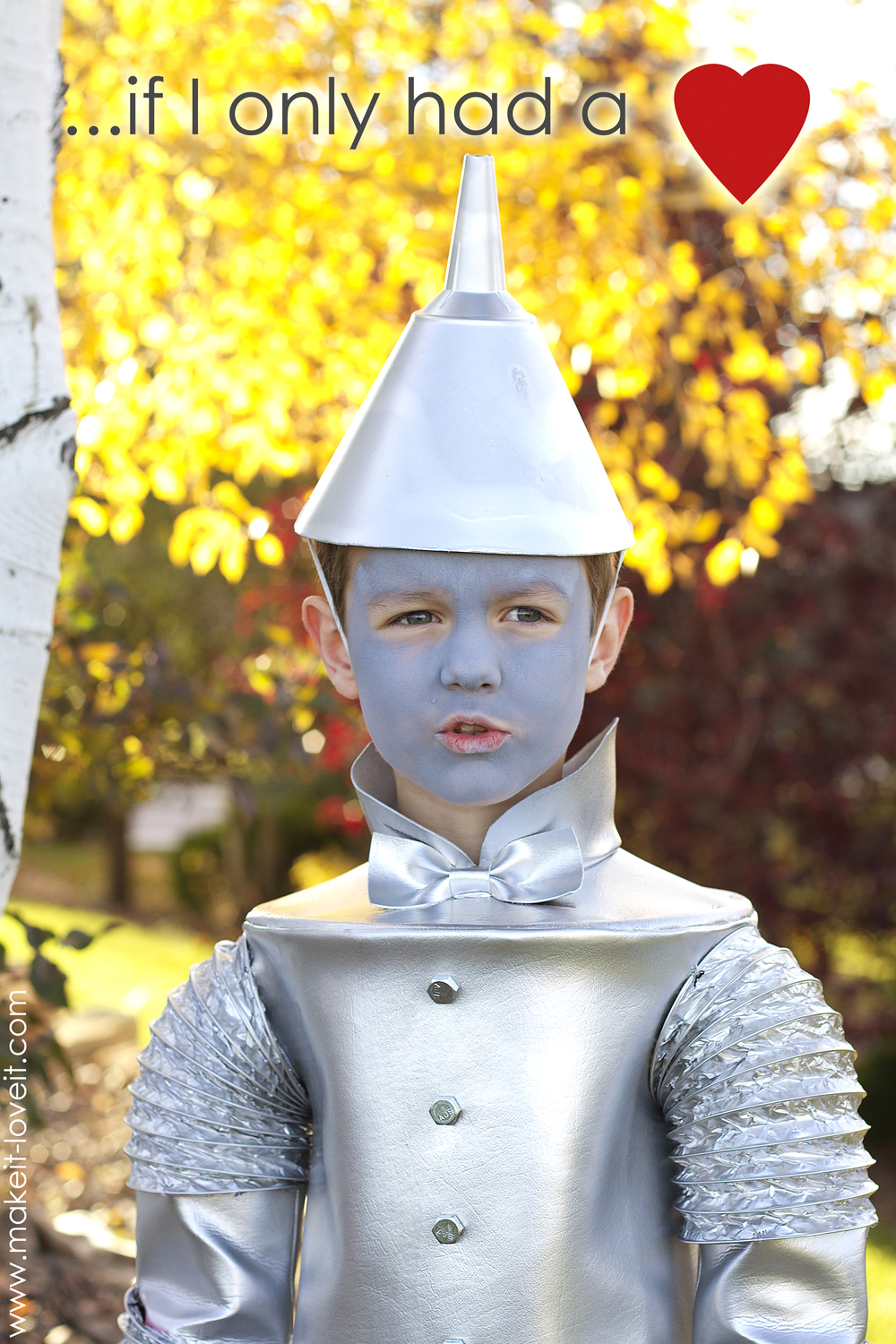 The TIN MAN (...from