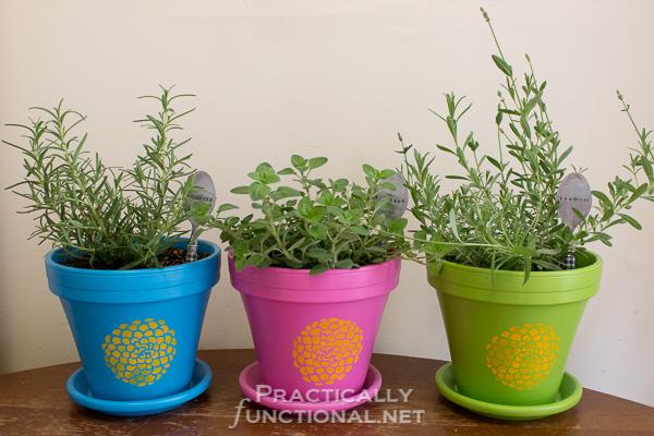 Painted-Flower-Pots-12