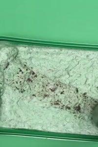 Yummy 2 Ingredient Ice Cream