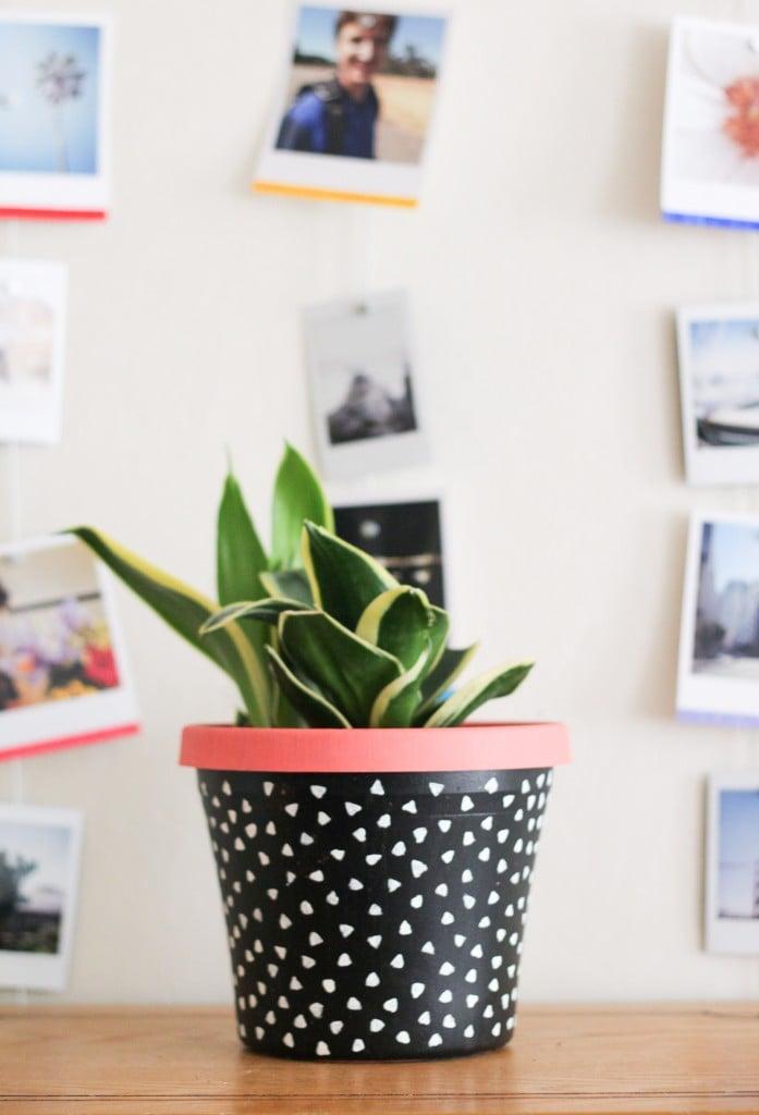 1diy-painted-planter-6-697x1024