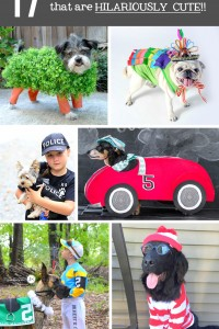 17 DIY Pet Costume Ideas....that are HILARIOUSLY CUTE!!! | via Make It and Love It