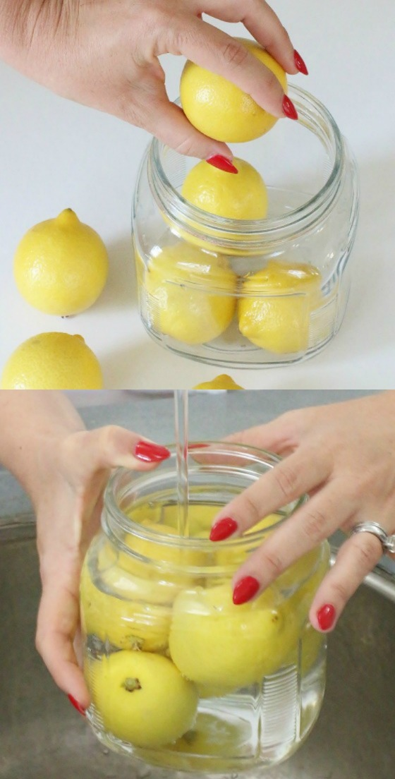how-to-store-lemons-6