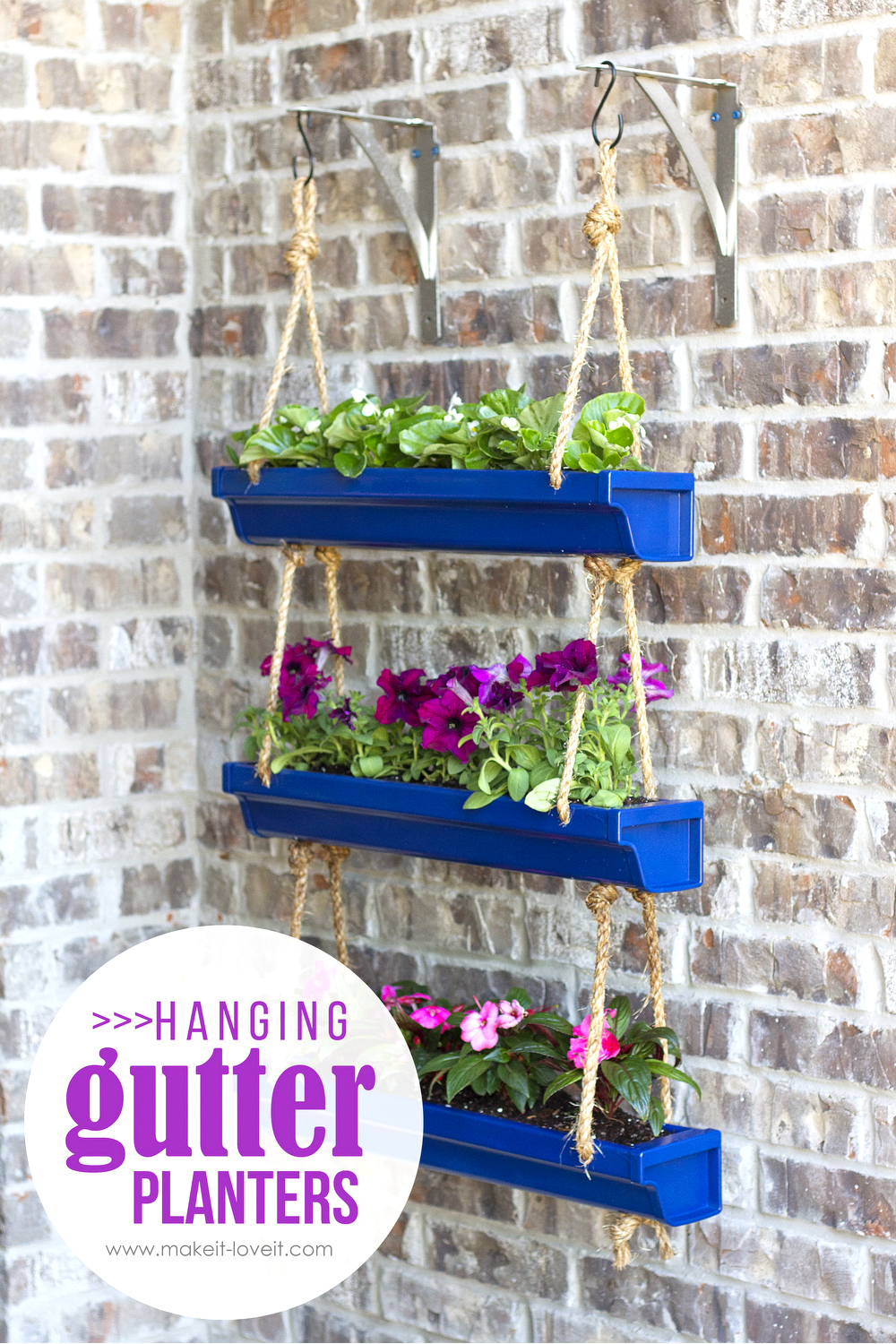 Diy window flower boxes make it and love it for Rain gutter planter box