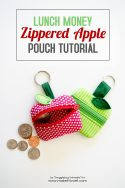 Lunch Money Apple Zippered pouch tutorial (1)
