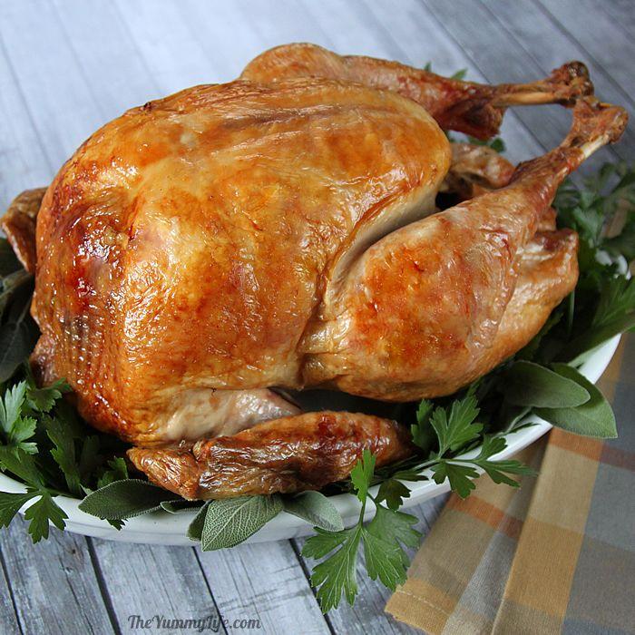 turkey-1