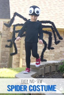 DIY: Easy NO-SEW Spider Costume!!! (...plus, one to GIVE AWAY!)